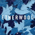 Etherwood_-_Blue_Leaves.jpg